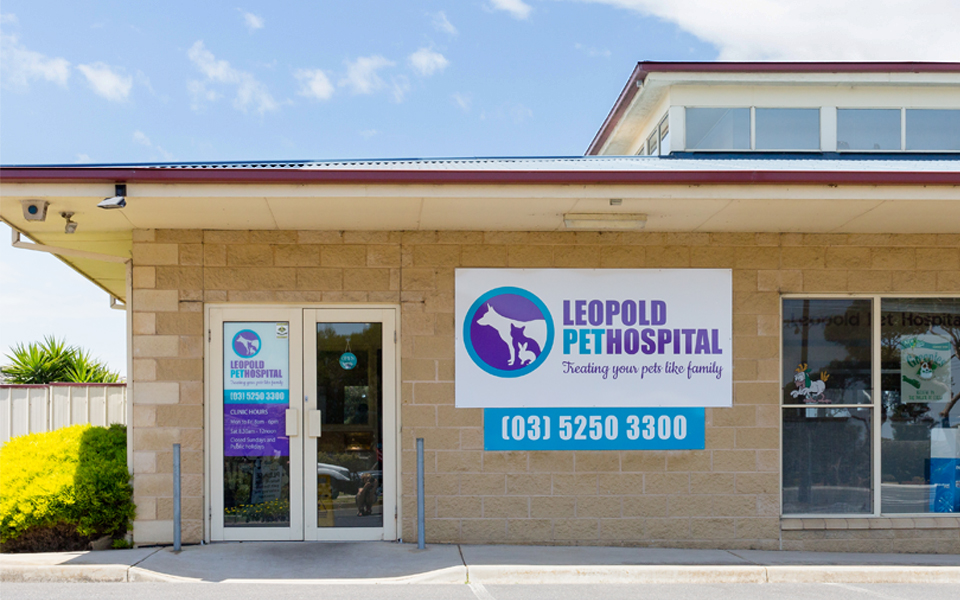 Leopold pet hospital signage window stickers and outdoor panel signs